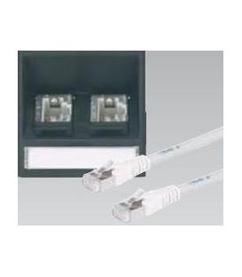 Datenplatte mit zwei Telefon und Datenbuchsen Schrägauslass
